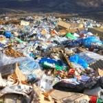 Около половины мусора — пластик.