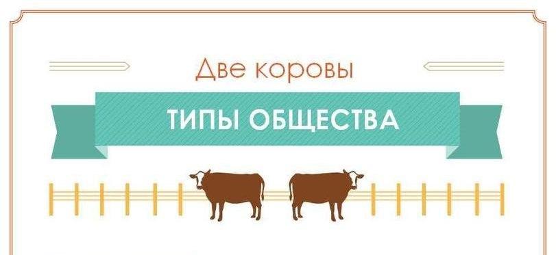Типы общества на примере двух коров